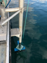 Multi-beam transducer in the water.
