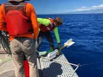 Brenden Deploys the G-882 magnetometer​, which follows the boat 30 m behind at a depth of about 6 m.