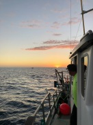 We all waiting for a green flash at sunset time, which came and wa