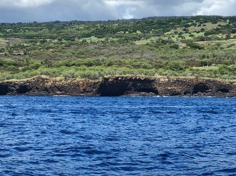 The terrestrial ends of lava tubes, as observed while surveying along the 30m depth contour line, south of Kailua-Kona.