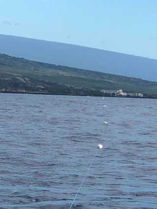 The 1 km Porpoise array nicely aligned with our survey boat. At the end of the array you can see the chase boat.
