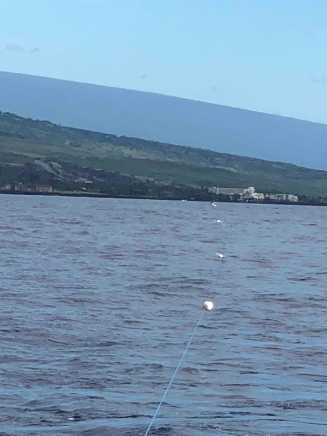 The 1 km Porpoise array nicely aligned​ with our survey boat. At the end of the array​ you can see the chase boat.